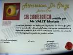 certificat formation sol béton ciré spatulé/coulé (sercets d'artisan)