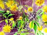 fleurs 2005