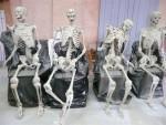 squelette Téléfilm Nicolas Floch