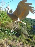 oiseau muséographie cité des sciences